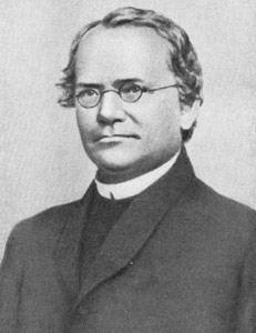 Грегор Иоганн Мендель (Gregor Johann Mendel)