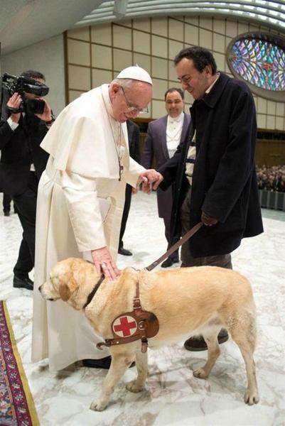 Папа Франциск благословляет собаку-поводыря на аудиенции для журналистов в Ватикане