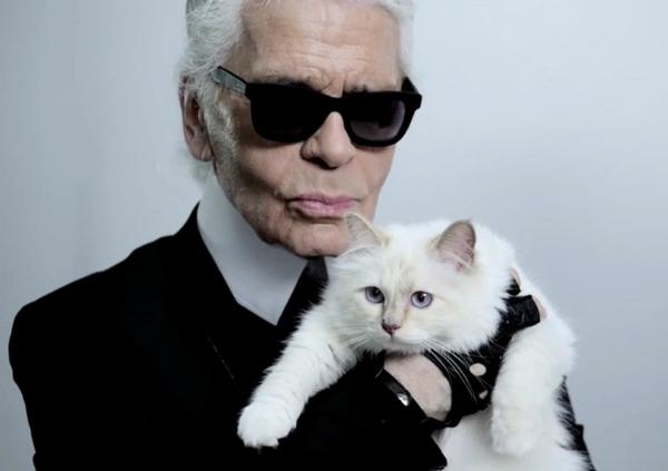 Карл Лагерфельд женится на собственной кошке