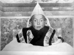Биография Далай-ламы в картинках