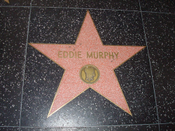 Звезда Эдди Мерфи на Голливудской алее славы