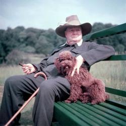 Уинстон Черчилль и его собака Руфус. (Чартвелл, 1950 год)