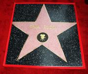 Звезда Пола Радда на Аллее славы в Голливуде