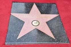 Звезда Фаррелла Уильямса на Аллее славы в Голливуде