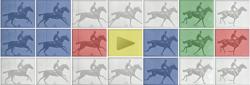 Эдвард Мейбридж на праздничном логотипе Google