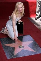 Звезда Рене Зельвегер на аллее славы