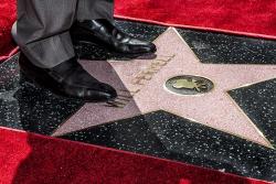 Звезда Уилла Феррелла на Аллее славы в Голливуде